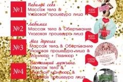 podarochniy_sever